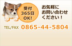 受付365日OK!お気軽にお問い合わせください!TEL/FAX:0865-44-5804